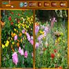 Flowers Similarities - Hiddenobject Games, Difference Games, Puzzle Games